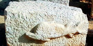 Patara Deniz Fenerinde yunus kabartması bulundu