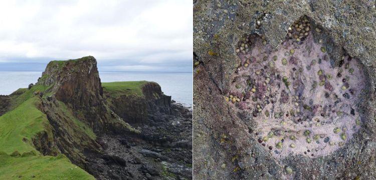 170 milyon yıllık dinozor ayak izleri keşfedildi