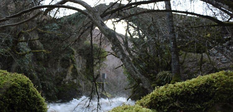 Debre'nin mimarı meçhul meşhur Geyik Köprüsü
