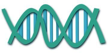 Arkeoloji ve genetik arasındaki mecburi ilişki ve sürtüşmeler