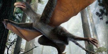 Sıradışı bir dinozor: Yi ki