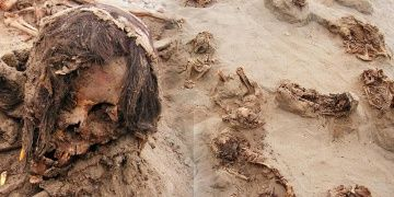 Peruda kalbi sökülmüş çocuk kurban iskeletleri bulundu
