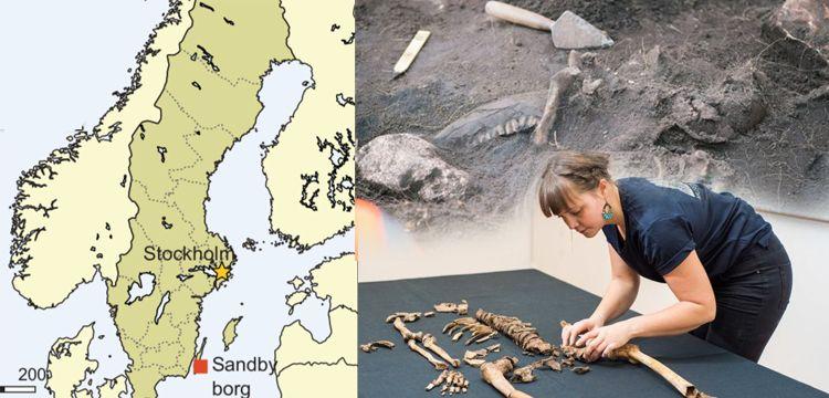 İsveç'te 1500 yıllık kanlı Viking katliamının izleri bulundu