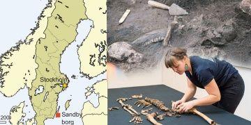 İsveçte 1500 yıllık kanlı Viking katliamının izleri bulundu