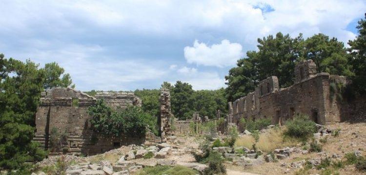 Seleukeia Antik Kenti'nin ocağına incir ağacı dikildi