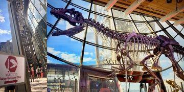 150 milyon yıllık dinozor fosili iki milyon euroya satıldı