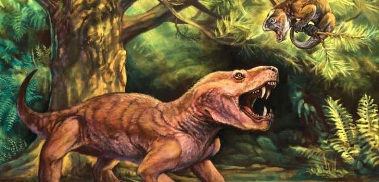Rusya'da en az 252 milyon yaşında 2 yırtıcı hayvan fosili bulundu