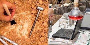 Arkeoloji nedir: Arkeolojinin tanımı nasıl yapılmalı?