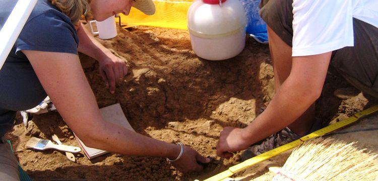 İlk yıl 150 beş yıl boyunca 750 arkeolog isdihdamı öngörülüyor