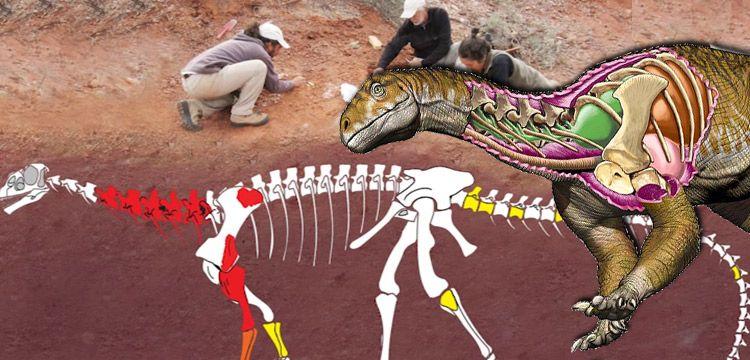 Arjantin'de şu ana dek bilinen en eski dev dinozor fosili bulundu