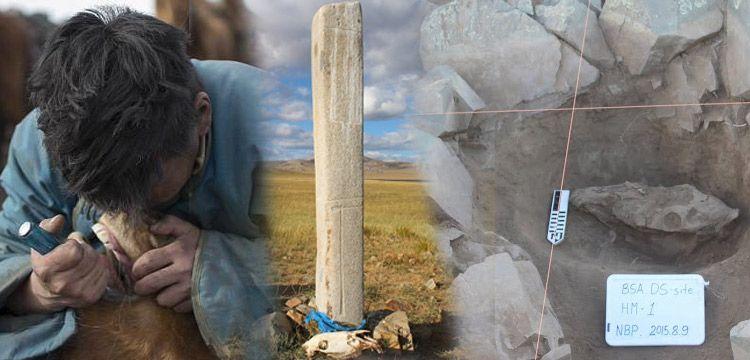 MoĞolİstanda baytarlar 3 bİn yıl Önce atları tedavİ edİyordu