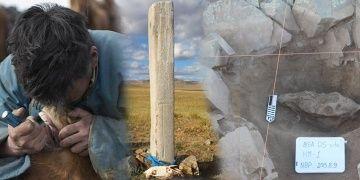 Moğolistanda baytarlar 3 bin yıl önce atları tedavi ediyordu