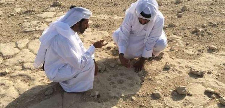 Katar'ın Al-Shahaniya kentinde petroglif alanı bulundu.
