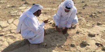 Katarın Al-Shahaniya kentinde petroglif alanı bulundu.