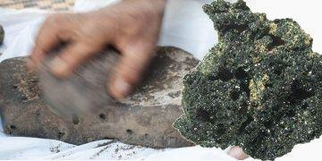 Dünyanın bilinen en eski ekmeği Ürdünde bulundu