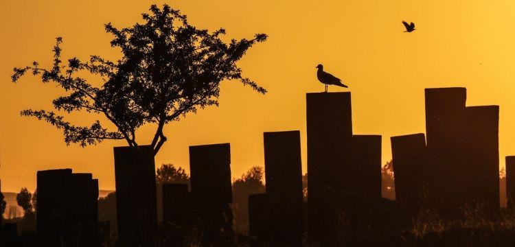 Ahlat Selçuklu Mezarlığında 8 binin üzerinde mezar bulunuyor