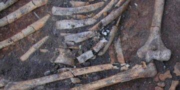 Ukraynada 4.500 yıllık kadın iskeletinde gizemli uygulama