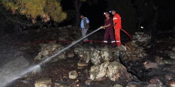 Antalyada define ararken ormanı yaktılar