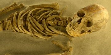 Meksikada Puyil mağarasında Mayalara ait iskeletler bulundu