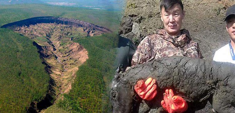 Yakutistan'da bozulmadan fosilleşmiş 40 bin yıllık tay bulundu