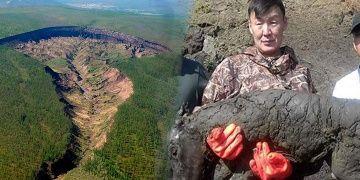 Yakutistanda bozulmadan fosilleşmiş 40 bin yıllık tay bulundu