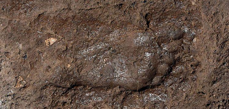 Arkeologlar Van'da Urartu ayak izi keşfettiler