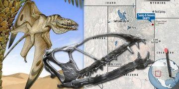 Utahta vampir dişli uçan dinozor fosili bulundu