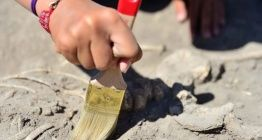 İç Moğolistanda 120 milyon yıllık dinozor fosilleri bulundu