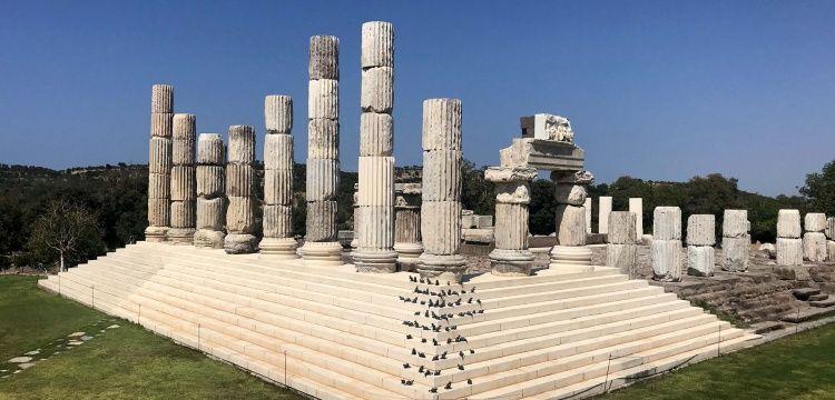 Apollon Tapınağı'nın Mitolojik Fareleri de Geldi