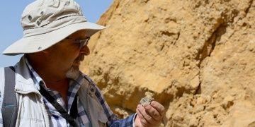 Bayburtlu köylülerin çıra diye yaktığı kehribar alanında fosiller bulundu