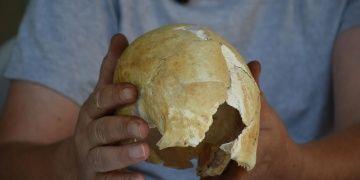 Arslantepe Höyüğündeki 5 bin yıllık şekillendirilmiş kafatasları incelendi