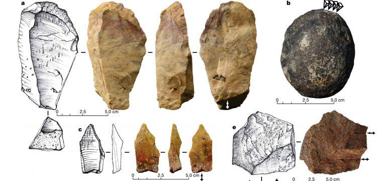 Filipinlerde 700 bin yıl önce insansı türlerin avlandığı anlaşıldı
