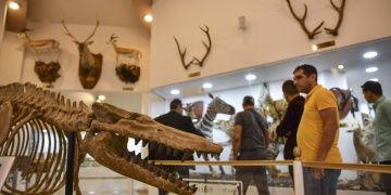 Müzede ders projesi Gaziantep Zooloji ve Doğa Müzesini şenlendirdi