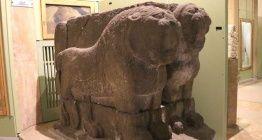 Göllüdağın 2800 yıllık Çift Hitit Aslanı Niğdeye geri döndü