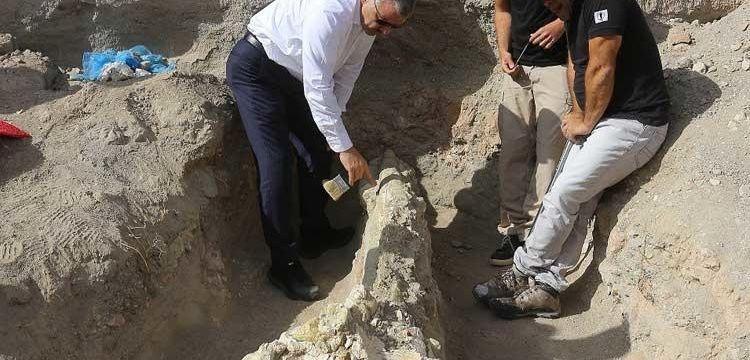Kayseri'deki Emmiler arkeoloji kazısında 7,4 milyon yıllık fil fosili bulundu