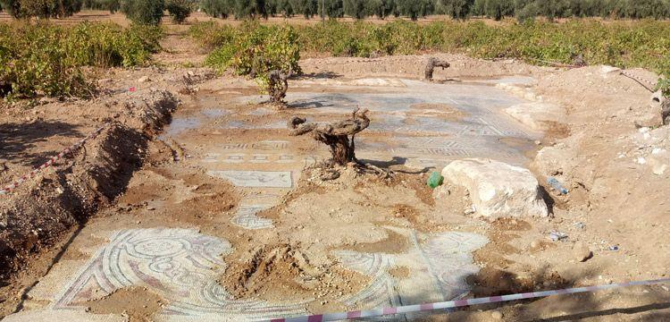 Kilis'teki tarlada bulunan mozaikler korumaya alındı