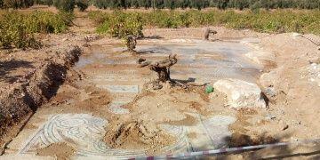 Kilisteki tarlada bulunan mozaikler korumaya alındı