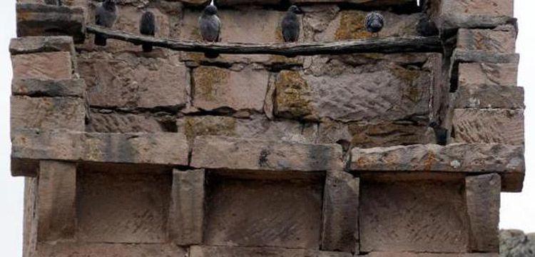 Tarihi güvercinliklerin restorasyonu için Anıtlar Kurulu onayı bekleniyor