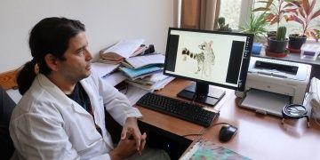 İzmirde fosili bulunan canlıya İzmirictis cani adı verildi