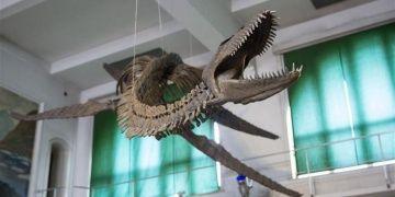 Arjantinde bulunan 9 metrelik Pleziyozorun replikası sergileniyor