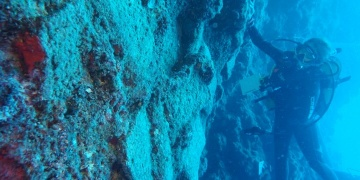 Dünyanın en eski batığından 3600 yıllık mızrak çıkartıldı