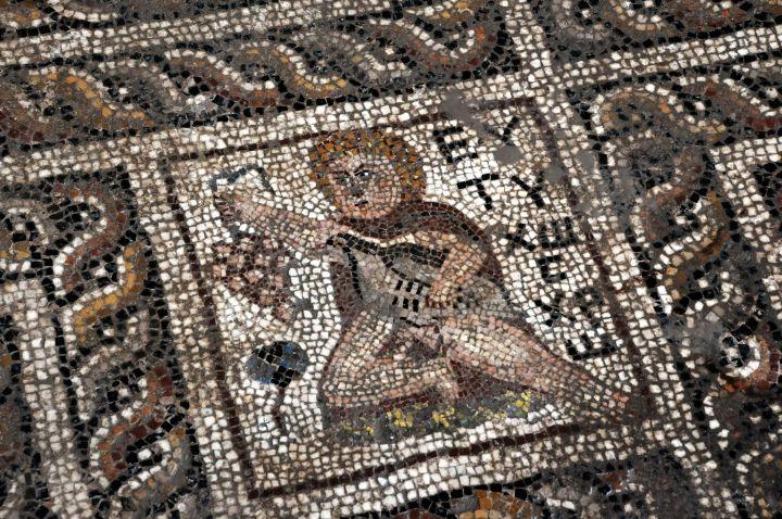 Osmaniye'de bulunan 2 bin yıllık turplu mozaik yerinde sergilenecek