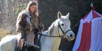 Vikingler kısrak yerine aygırlara binmeyi tercih ediyordu