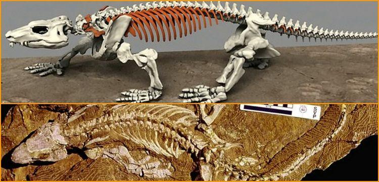 290 Mİlyon yıllık fosİlİ robot olarak ayaĞa kaldırıldı!