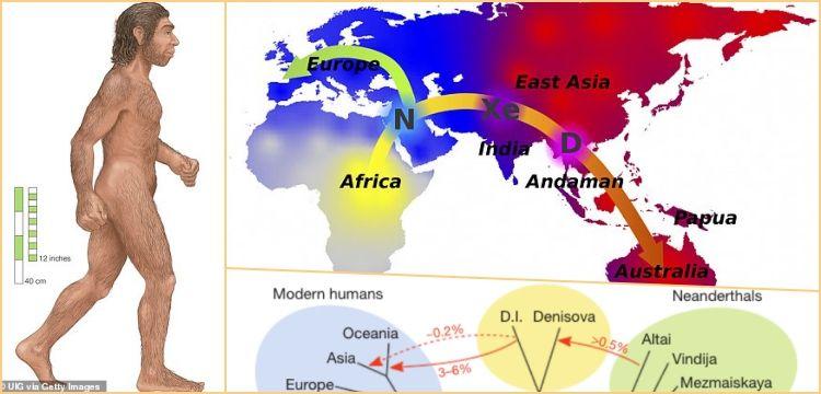 Neandertal ve Denisovan aşkı Yapay Zeka ile de kanıtlandı