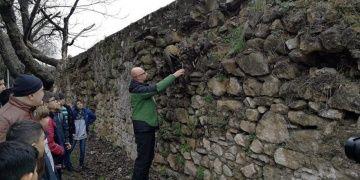 İznikteki Roma surlarını saran incir ağaçları temizlendi