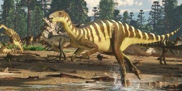 Avustralyada yeni keşfedilen dinozora Galleonosaurus dorisae adı verildi