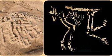 İranın Yanık Şehrinde bebek gibi gömülmüş Maymun mezarı bulundu