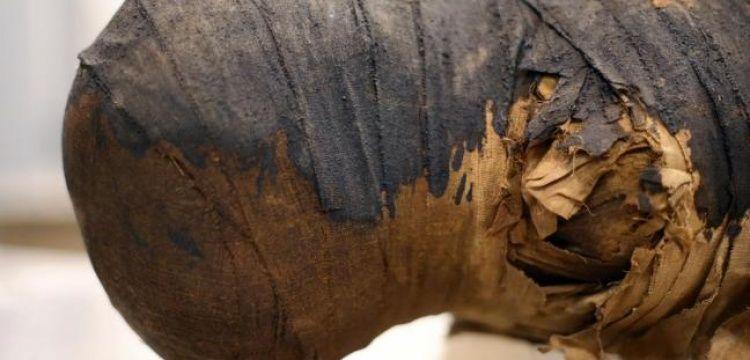 Minufiye'de 5 bin yıllık bir lahitte 2 mumya bulundu