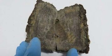 Ancient Egyptian manuscripts seized in Turkey